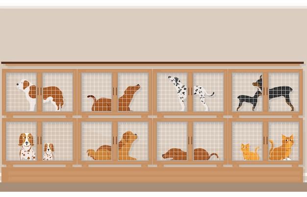 Cages de chiens et de chats à vendre dans une animalerie.