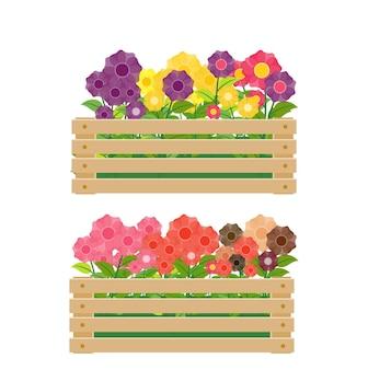 Caisse en bois avec des fleurs