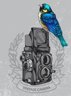 Caméra oiseau
