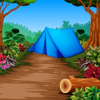 Camper dans la forêt avec la vue magnifique