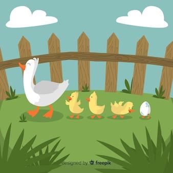 Canard mère plate et canetons sur l'herbe