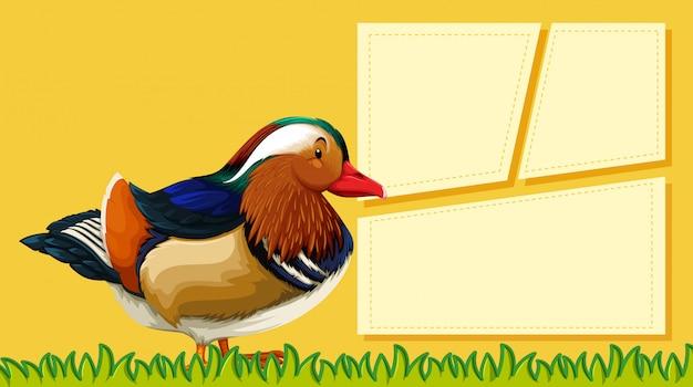 Un canard sur une note vide