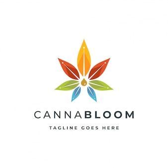 Cannabis avec goutte d'huile