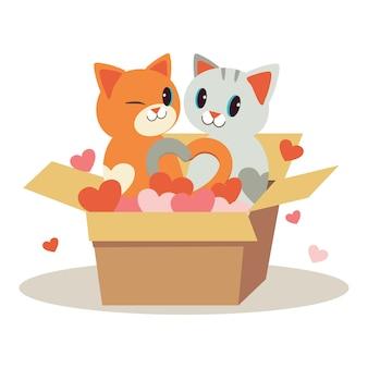 Caractère de couple amour de chat mignon dans la boîte et jouer un coeur sur blanc
