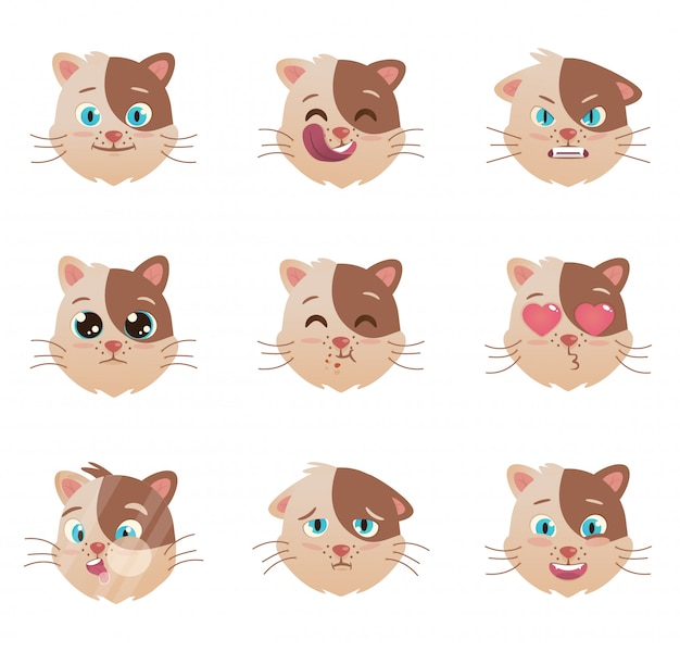Caractère des émotions des chats
