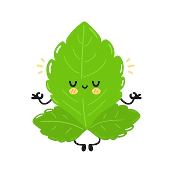 Caractère de feuilles de stevia drôle mignon. icône d'illustration de personnage kawaii simple dessin animé plat dessiné à la main de vecteur. isolé sur fond blanc. concept de personnage de dessin animé de feuilles de sucre stevia