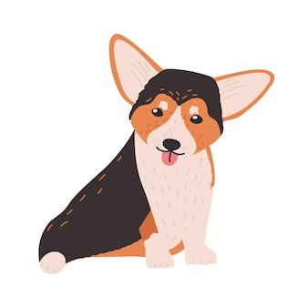 Cardigan mignon welsh corgi. petit chien ou chiot adorable drôle de race de troupeau isolé sur fond blanc. animal de compagnie doux de race pure. illustration vectorielle de couleur vive dans un style cartoon plat.