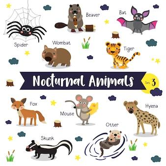 Caricature d'animaux nocturnes avec nom d'animal