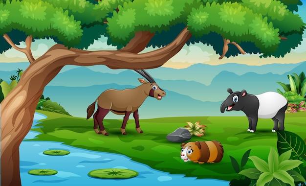 Caricature d'animaux sauvages jouant dans le pré au bord de la rivière