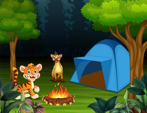 Caricature d'un bébé tigre et d'une hyène dans le camping