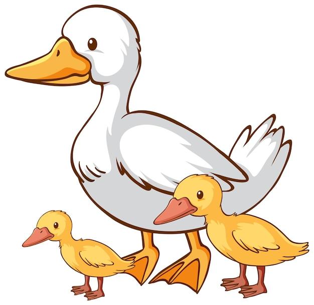 Caricature de canard mère et bébé sur fond blanc