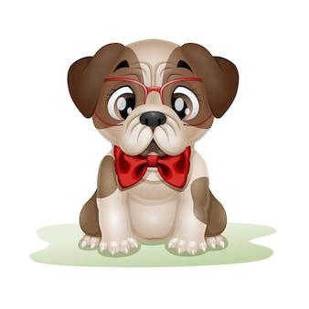 Caricature de carlin chiot mignon portant des lunettes rouges et un arc