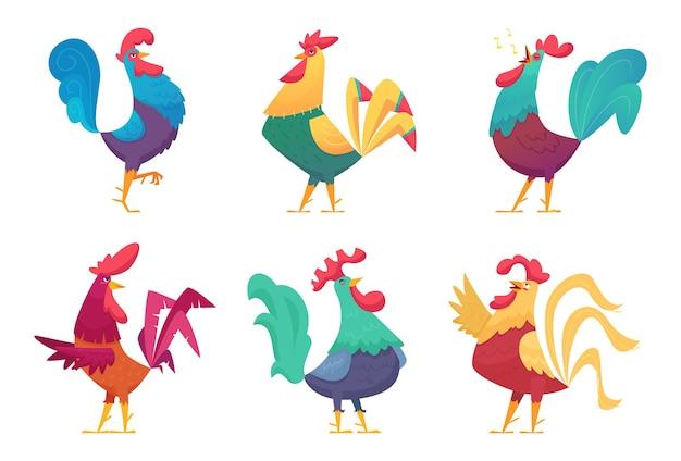 Caricature de coq. oiseaux mâles de ferme de poulet avec des plumes colorées