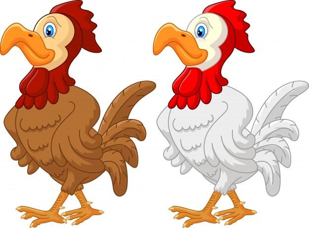 Caricature de coq