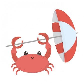 Caricature de crabe isolé