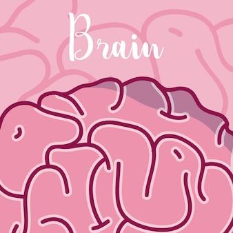 Caricature du cerveau humain