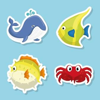 Caricature de la faune marine