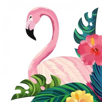 Caricature de flamant tropical