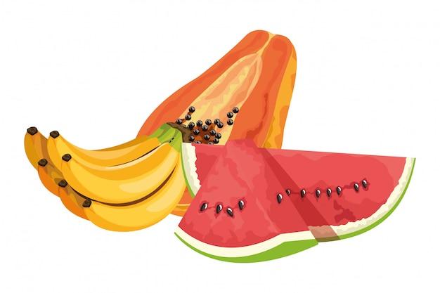 Caricature d'icône de fruits tropicaux exotiques