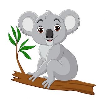 Caricature de koala mignon assis sur une branche d'arbre