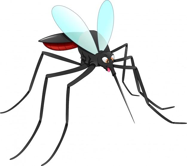 Caricature de moustique
