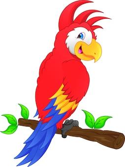 Caricature d'oiseau ara