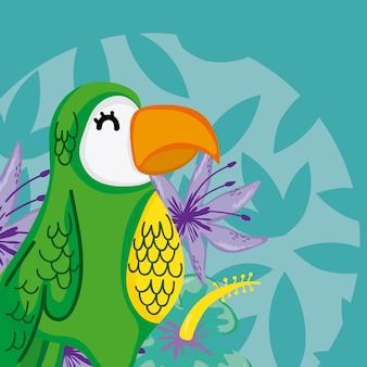 Caricature d'oiseaux exotiques