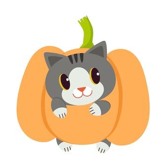 Caricature de personnage de chat mignon jouer avec la citrouille.