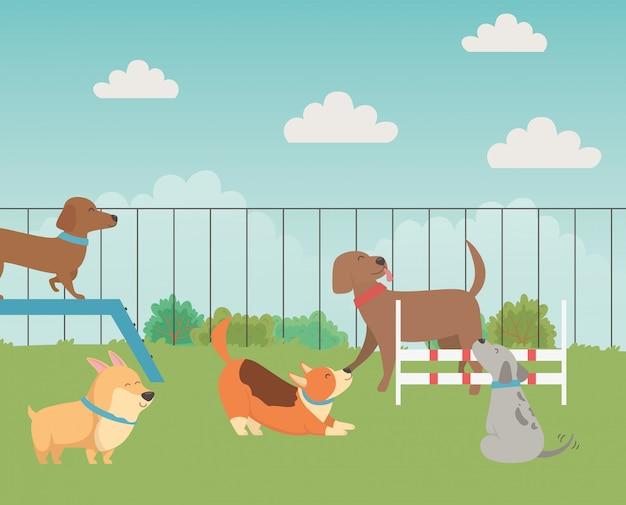 Caricatures de chiens dans le parc