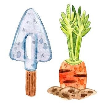 Carotte en terre, pelle. ferme, clipart de jardinage, ensemble d'éléments. illustration aquarelle.