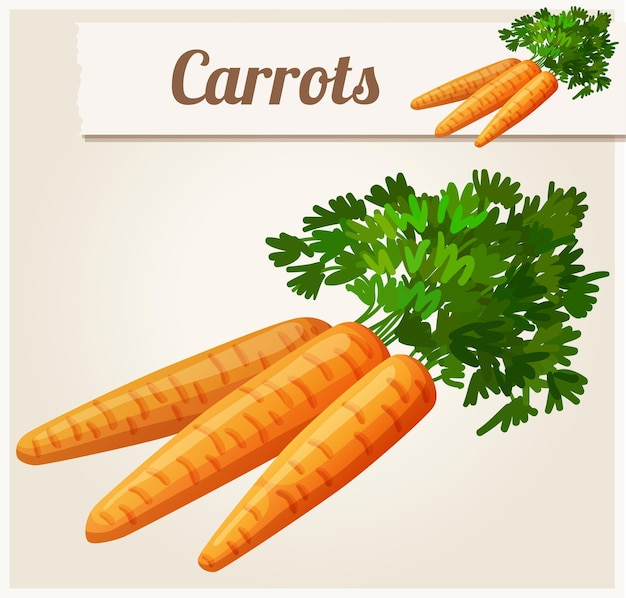 Les carottes.