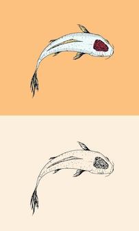 Carpe koi poisson japonais animal gravé à la main dessin au trait vintage