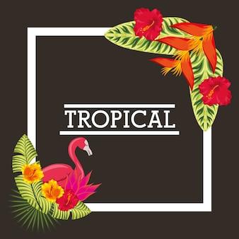 Carte d'animaux feuilles tropicales