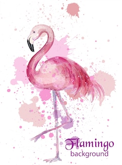 Carte aquarelle vintage flamant rose