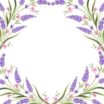 Carte élégante avec des fleurs de lavande.