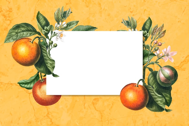 Carte encadrée orange