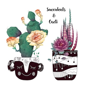 Carte avec ensemble de cactus et de plantes succulentes.
