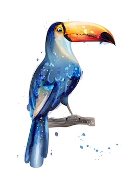 Carte d'été aquarelle toucan
