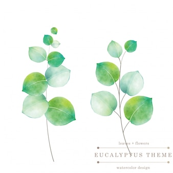 Carte floral vert aquarelle