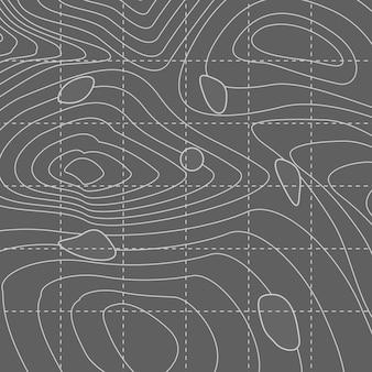 Carte de lignes de contour abstraites blanches et grises