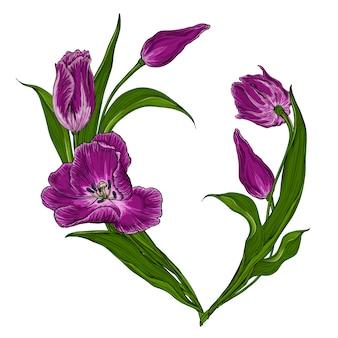 Carte postale de vecteur avec des tulipes rose foncé