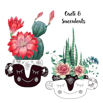 Carte avec set de cactus et plantes succulentes