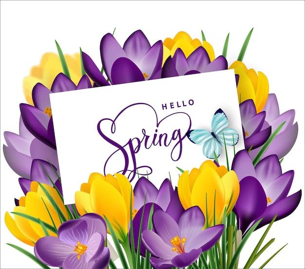 Carte de voeux avec bouquet de crocus de fleurs printanières dans l'enveloppe. illustration vectorielle