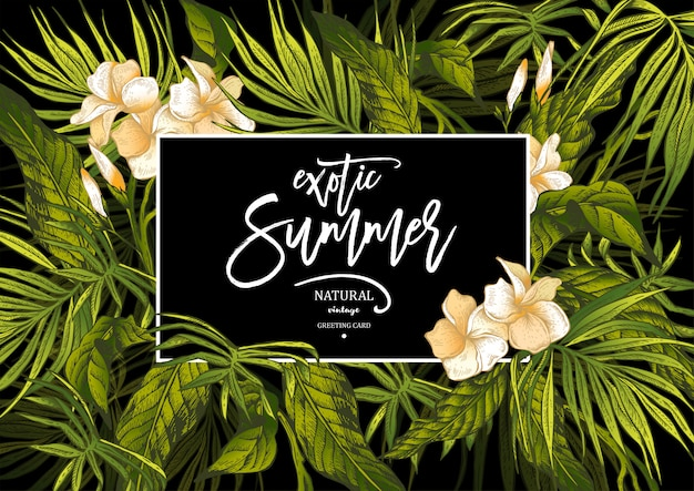 Carte de voeux exotique vintage summer vector leaves