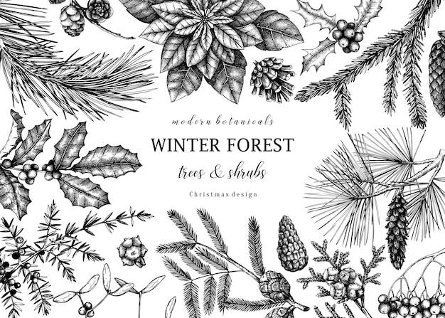 Carte de voeux de noël ou conception d'invitation cadre vectoriel avec des croquis de conifères et de plantes d'hiver