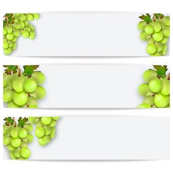Cartes ou étiquettes avec des raisins réalistes