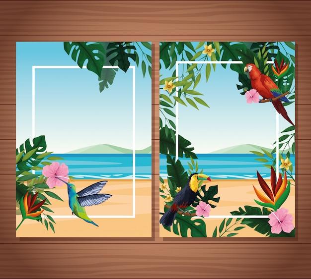 Cartes vierges d'été avec cadre
