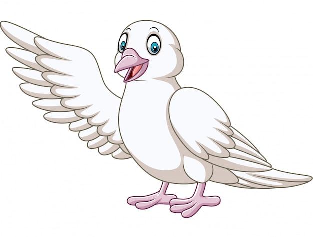 Cartoon colombe mignonne présentant