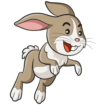 Cartoon lapin