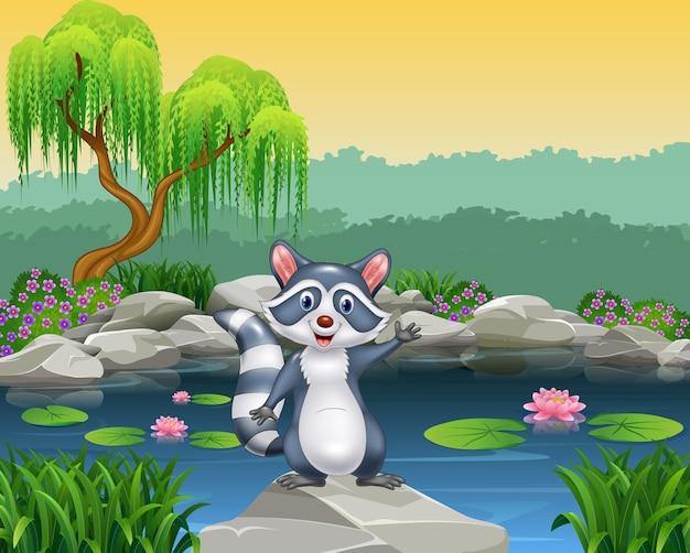 Cartoon raton laveur heureux agitant